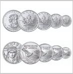 地金型プラチナコイン